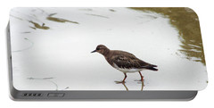 Portable Battery Charger featuring the photograph Bird Walking On Beach by Mariola Bitner