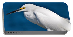 Birds 11 17 Portable Battery Charger