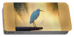 Birds And Fun At Butler Park Austin - Birds 3 Detail Macro Portable Battery Charger by Felipe Adan Lerma