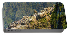 Portable Battery Charger featuring the photograph Birds On The Rocks by Jonny D