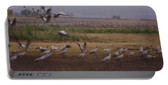 Birds4 Portable Battery Charger
