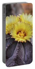 Portable Battery Charger featuring the photograph Bishop's Cap Cactus  by Saija Lehtonen