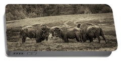 Bison 1 - Pano Portable Battery Charger