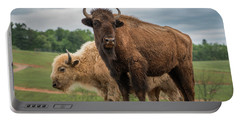 Bison 10 Portable Battery Charger