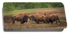 Bison 2 Portable Battery Charger