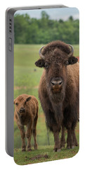Bison 4 Portable Battery Charger