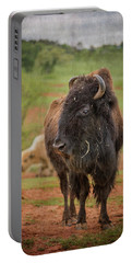 Bison 5 Portable Battery Charger