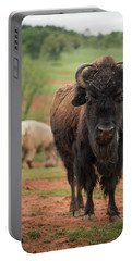 Bison 6 Portable Battery Charger