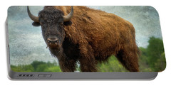 Bison 9 Portable Battery Charger