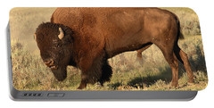 Portable Battery Charger featuring the photograph Bison Huffing And Puffing For Herd by Max Allen