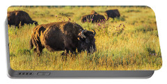 Portable Battery Charger featuring the photograph Bison In Autumn Gold by Yeates Photography