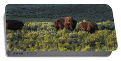Bison In Autumn Light Portable Battery Charger