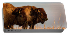 Bison Pair Portable Battery Charger