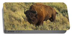 Bison Portable Battery Charger