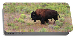 Bison1 Portable Battery Charger