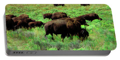 Bison2 Portable Battery Charger