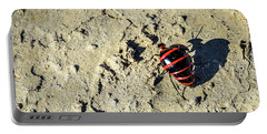 Bisti Badlands - Red And Black Blister Bug Portable Battery Charger