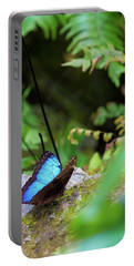 Black And Blue Butterfly Portable Battery Charger