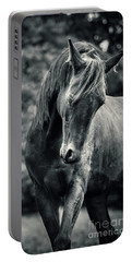 Black And White Portrait Of Horse Portable Battery Charger