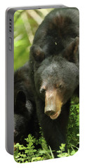 Portable Battery Charger featuring the photograph Black Bear And Cub On Ground by Coby Cooper