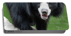 Sun Bear Portable Battery Charger