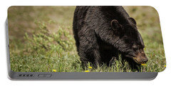 Portable Battery Charger featuring the photograph Black Bear by Brad Allen Fine Art