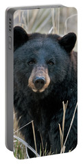 Black Bear Closeup Portable Battery Charger