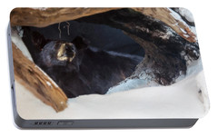 Portable Battery Charger featuring the digital art Black Bear In Its Winter Den by Chris Flees
