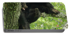 Portable Battery Charger featuring the photograph Black Bear In Tree With Cub by Coby Cooper