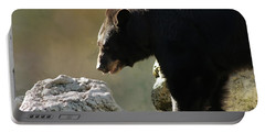 Black Bear On The Rocks Portable Battery Charger