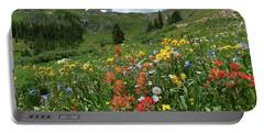 Black Bear Pass Landscape Portable Battery Charger