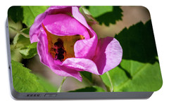 Portable Battery Charger featuring the photograph Black Bee Collecting Pollen by Darcy Michaelchuk