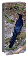 Portable Battery Charger featuring the photograph Black Bird On Branch by Francesca Mackenney