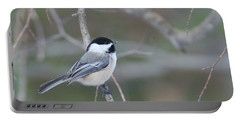 Black Capped Chickadee 1379 Portable Battery Charger by Michael Peychich