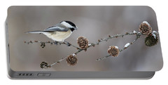 Portable Battery Charger featuring the photograph Black-capped Chickadee by Mircea Costina Photography