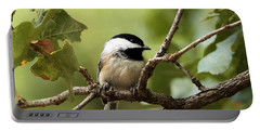 Black Capped Chickadee On Branch Portable Battery Charger