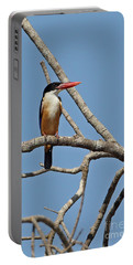 Black-capped Kingfisher Portable Battery Charger by Neil Bowman/FLPA