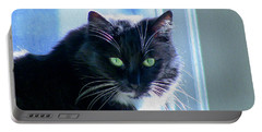 Black Cat In Sun Portable Battery Charger
