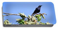 Grackle On A Tree Portable Battery Charger