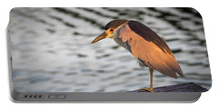 Black Crowned Night Heron At Dawn Portable Battery Charger
