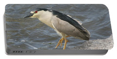 Portable Battery Charger featuring the photograph Black-crowned Night Heron by Doris Potter
