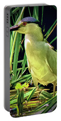 Portable Battery Charger featuring the photograph Black Crowned Night Heron by Joseph Hollingsworth