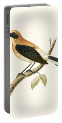 Black Eared Wheatear Portable Battery Charger by English School