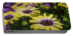 Black Eyed Susan Flowers-2215 Portable Battery Charger