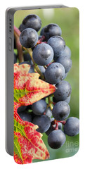 Black Grapes On The Vine Portable Battery Charger
