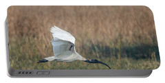 Black-headed Ibis 01 Portable Battery Charger