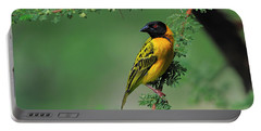 Black-headed Weaver Portable Battery Charger