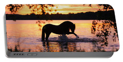 Black Horse Bathing In Sunset River Portable Battery Charger