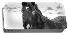 Black Horse Staring In The Snow Black And White Portable Battery Charger