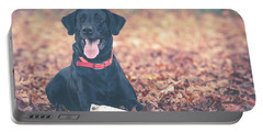Black Labrador In The Fall Leaves Portable Battery Charger